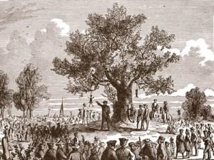 liberty_tree